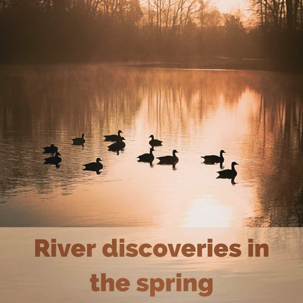Read more about the article River discoveries in the spring 2021